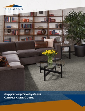 carpet care guide